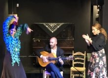 Flamenco Show in Malaga